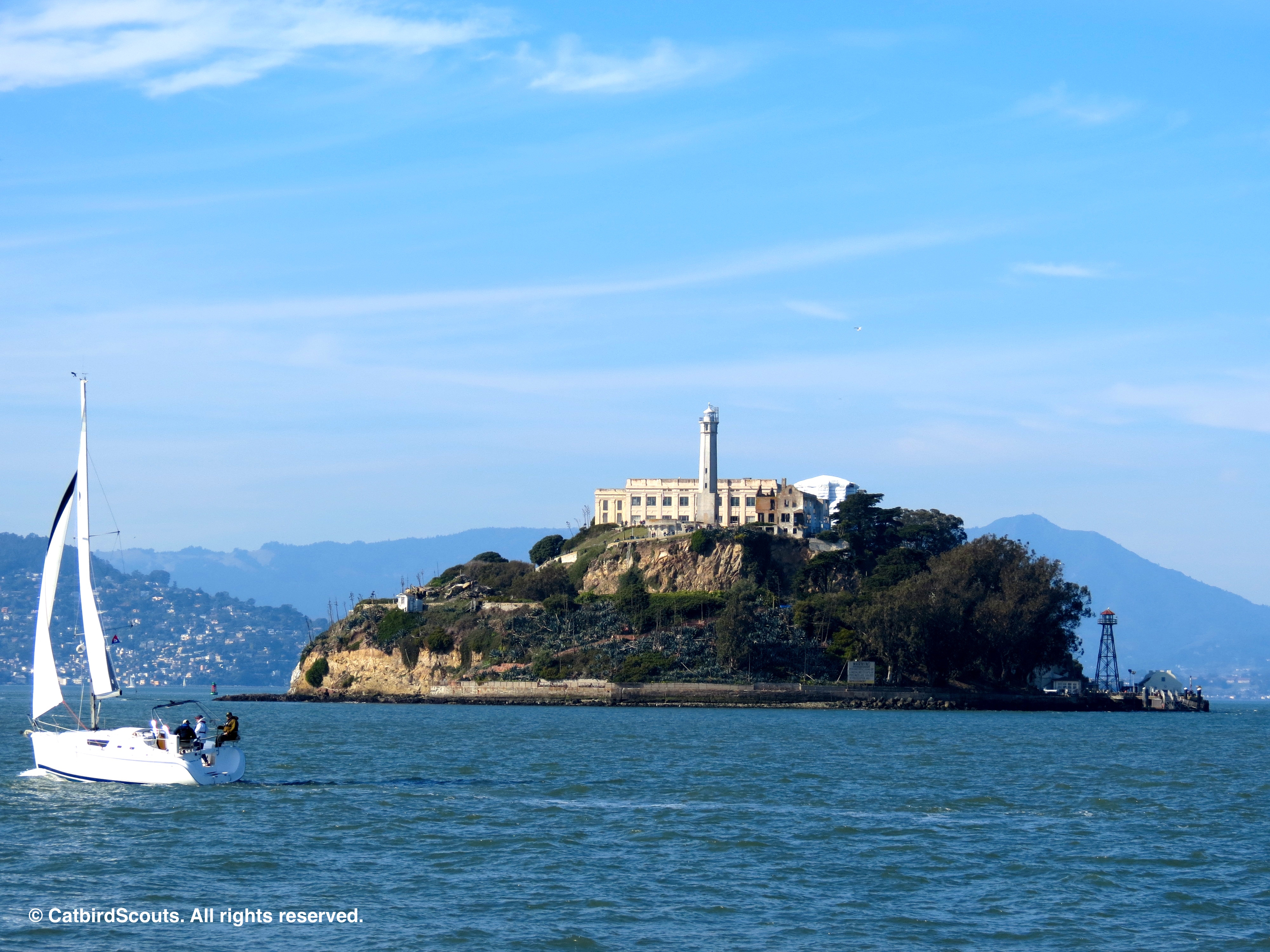 Alcatraz-Catbird-Scouts