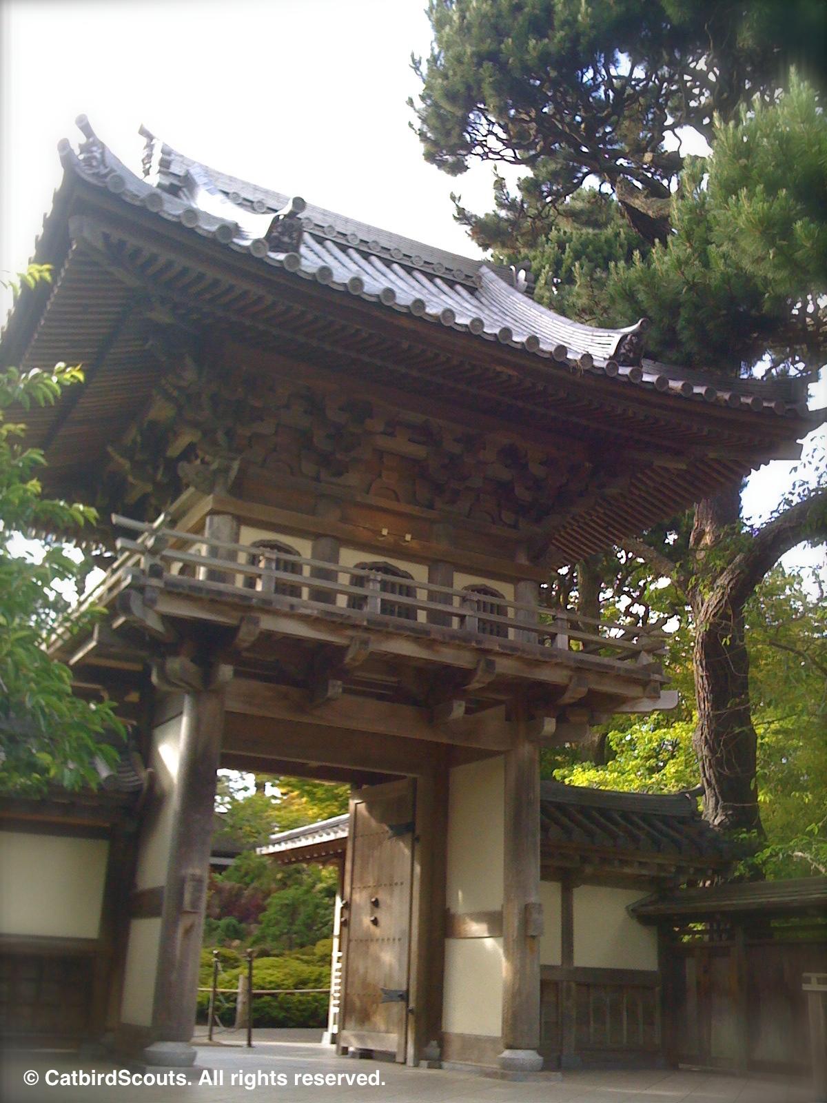JapaneseTeaGarden-Catbird-Scouts