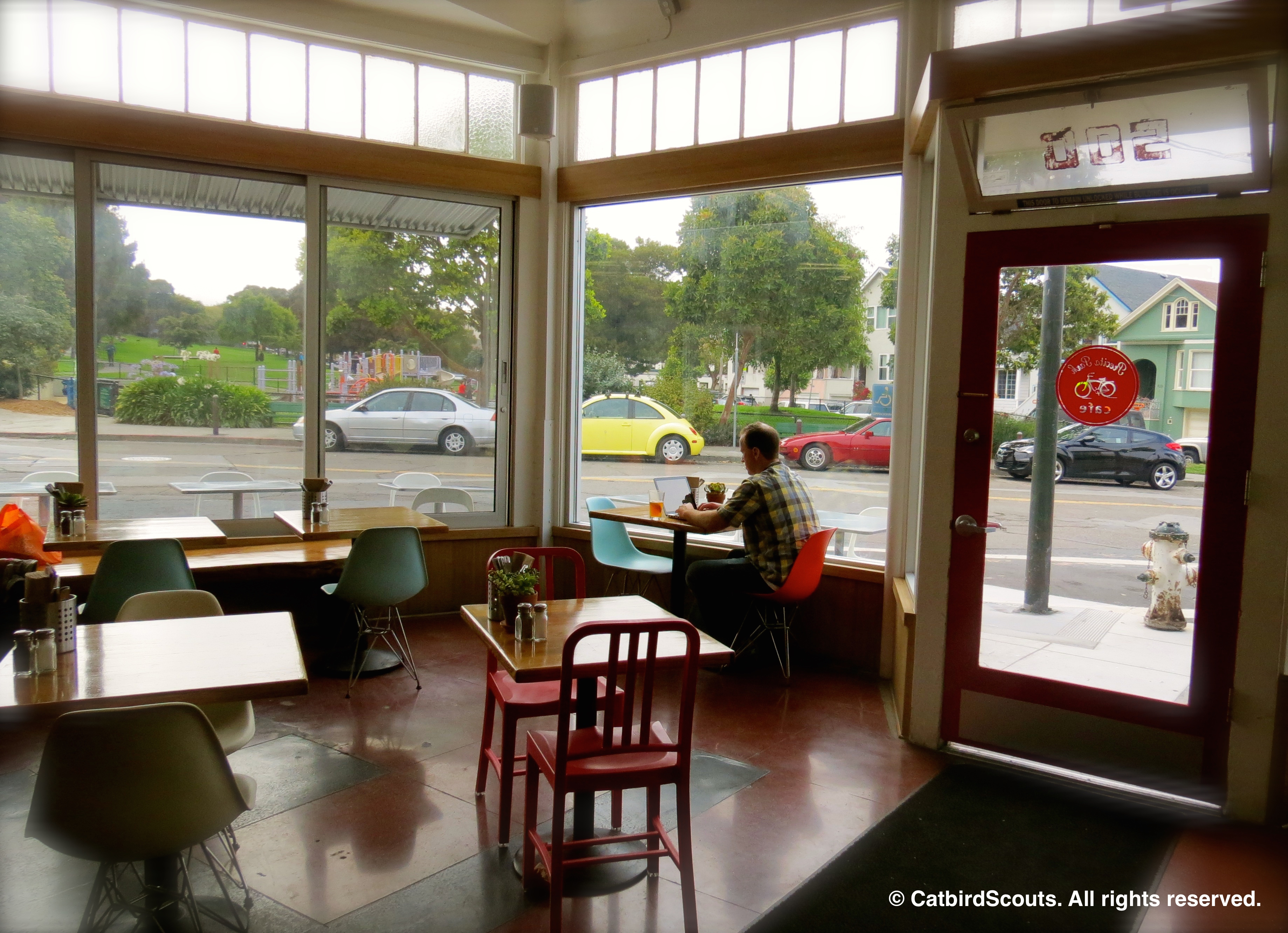 CoffeeShop-Catbird-Scouts