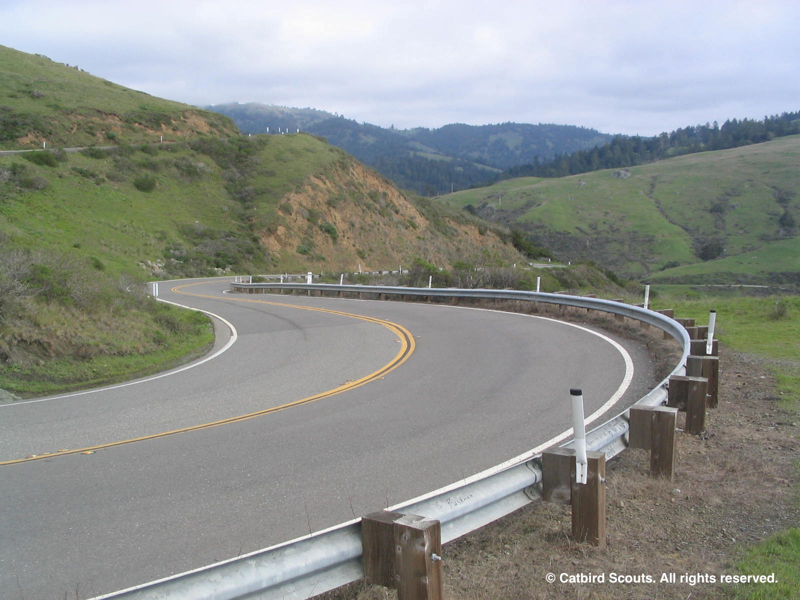 Hwy1Curve-Catbird-Scouts