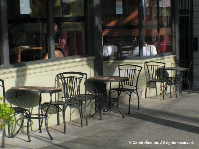 SidewalkCafe-Catbird-Scouts